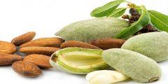 فوائد صحية غذائية وعلاجية للوز الأخضر
